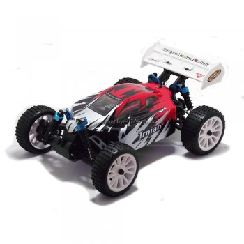 Wind Hobby TROIAN 1/16 Scale 4WD Electric Powered Off-Road Buggy with 2.4GHz Radic
